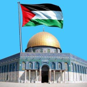 Freedom to Palestine